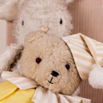 Portretfotografie: Teddyberen