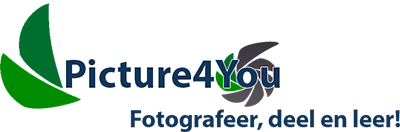 Picture4You Fotografie Logo