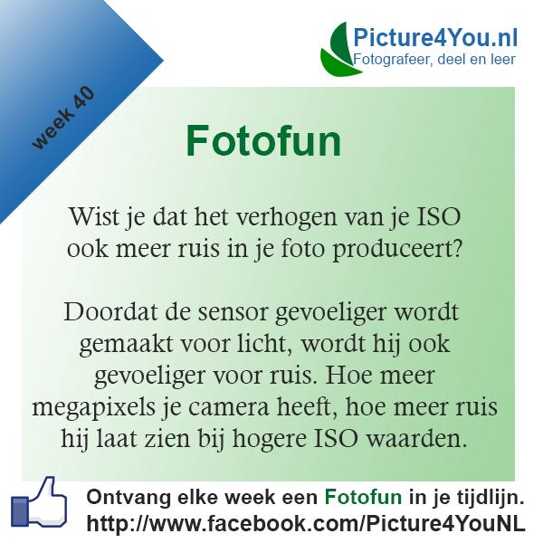 Fotografie weetjes Fotofun week 40