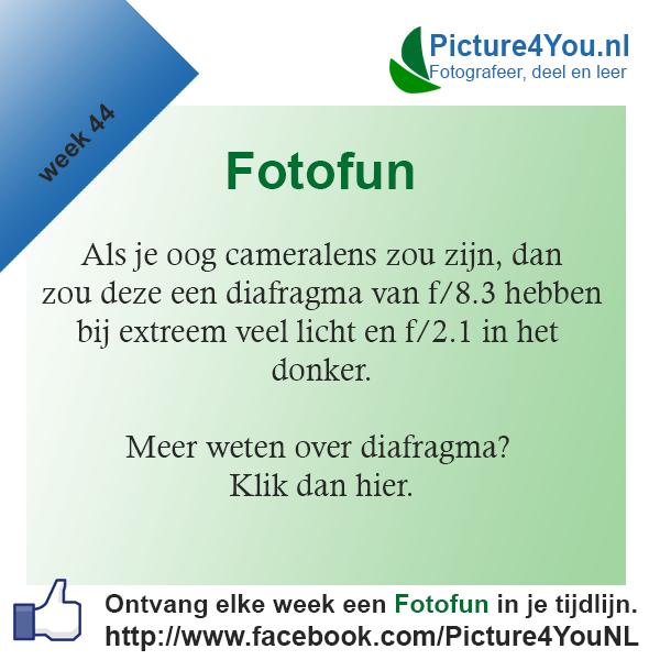 Fotografie weetjes Fotofun week 44