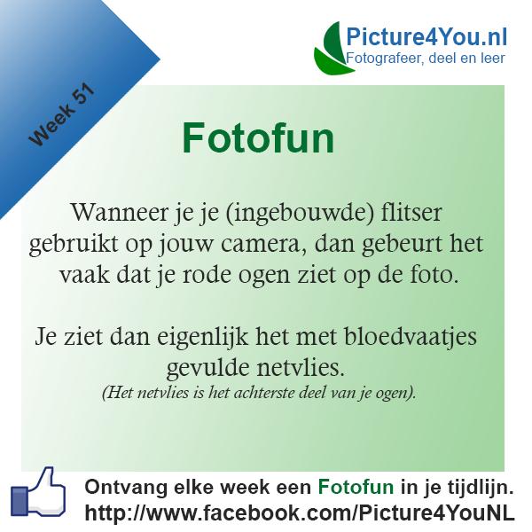 fotofun-week-51